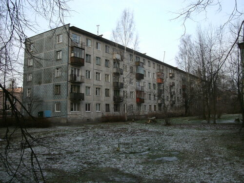 ул. Карпинского 24