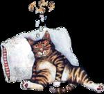 Кошки 5 0_57c47_1648032d_S