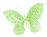 бабочки 0_58f10_75ff0b7a_S