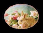 «ZIRCONIUMSCRAPS-HAPPY EASTER» 0_5416c_a96e663a_S
