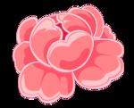Цветы 142
