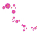 sekadadesigns_pinkflowers_element(33)
