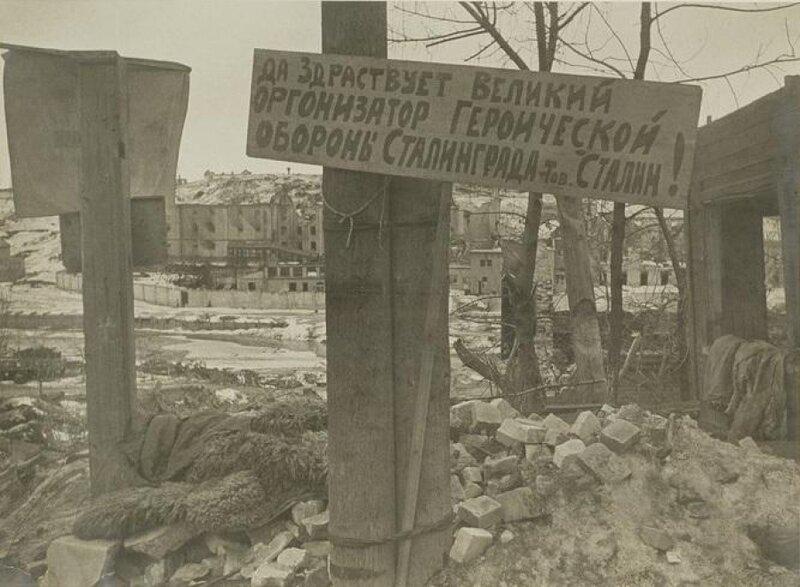 Сталинградская битва, сталинградская наука, битва за Сталинград