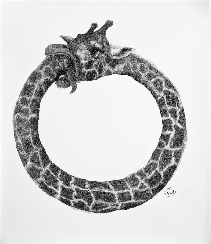 Animal Kingdom, Liam Gerrard0.jpg