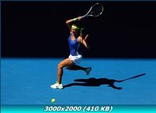 http://img-fotki.yandex.ru/get/6004/13966776.4a/0_775f7_8aa86e3b_orig.jpg