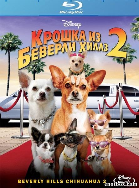 Крошка из Беверли-Хиллз 2 / Beverly Hills Chihuahua 2 (2010/BDRip/HDRip)