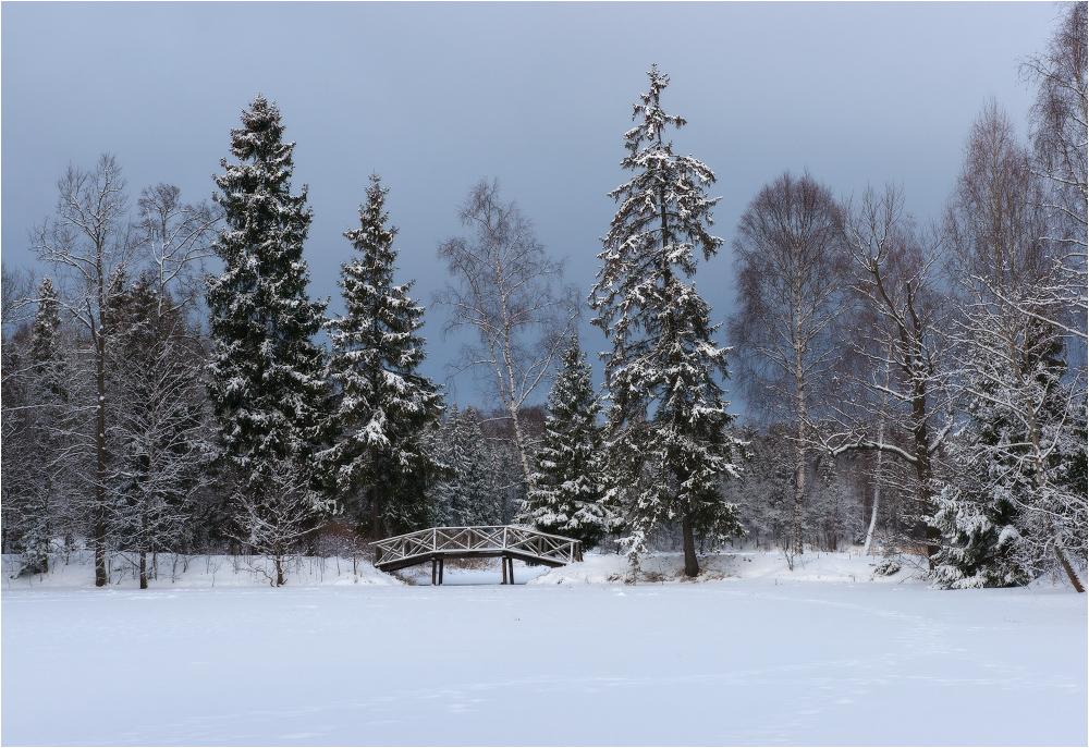 В тишине зимнего парка