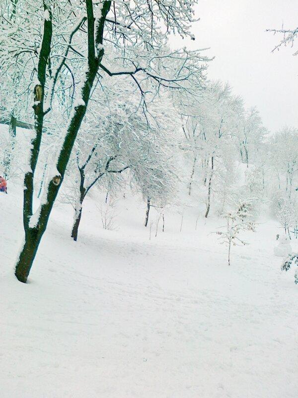 Нижняя терраса Владимирской горки зимой