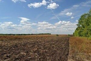 В Якутии посевную площадь увеличат до 59 560 гектаров