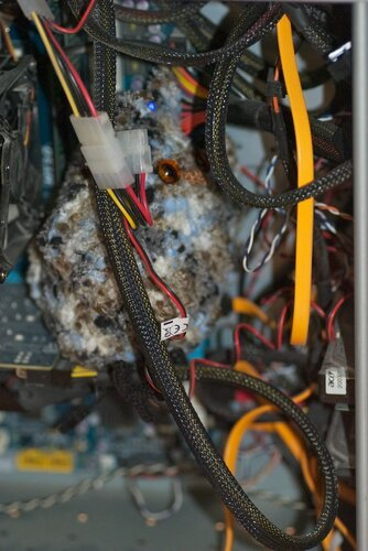 Сова копается в проводах внутри системника