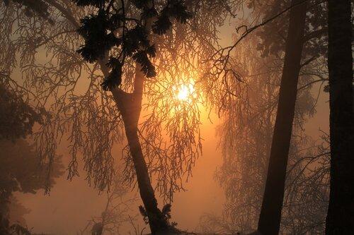 Мартовский восход солнца
