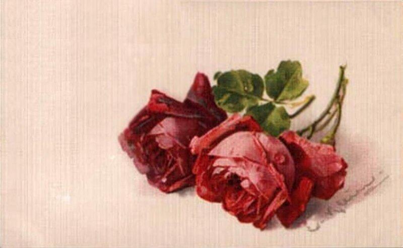 К. Кляйн. Две розы.