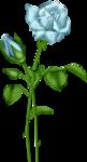 «lrbunnyhope»  0_56c15_62fc0085_S