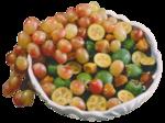 Виноград  0_5a141_1a0b51d1_S