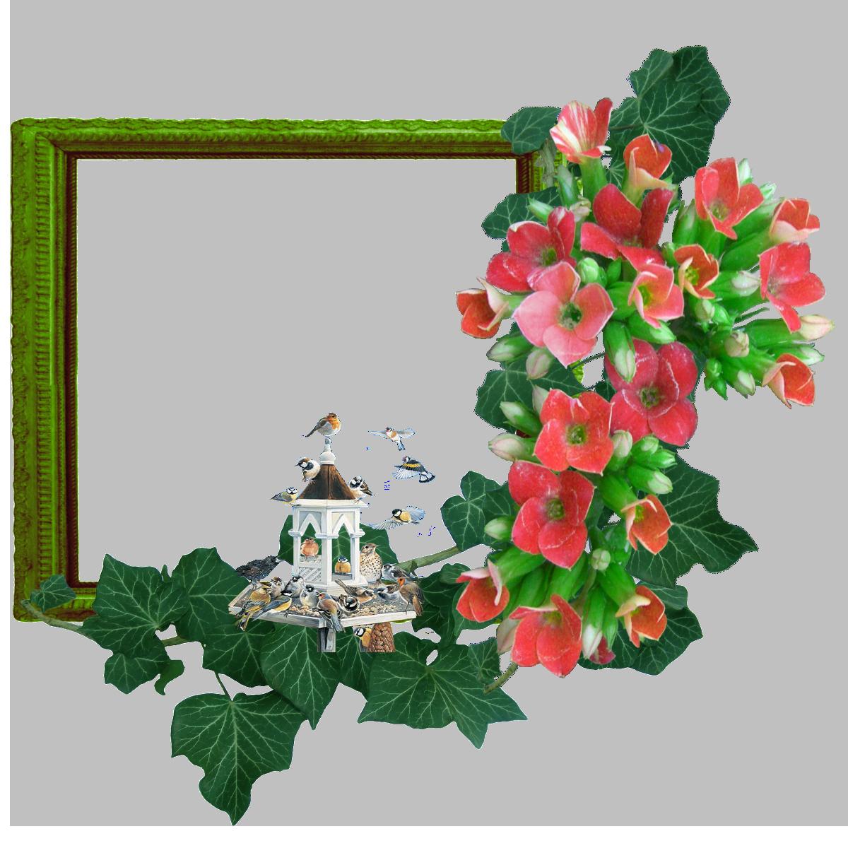 http://img-fotki.yandex.ru/get/6004/svetlera.c/0_4f7f8_da90ee4b_orig.png