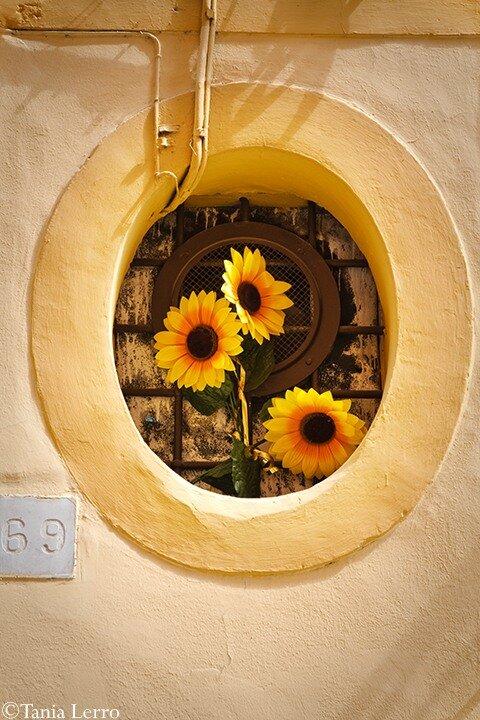 http://img-fotki.yandex.ru/get/6004/tanialerro.6/0_48d71_f41d0359_XL.jpg
