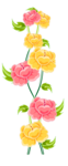 Цветы 26