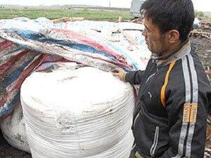 В Приморье выявлена партия китайских пестицидов