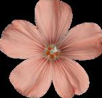 Sky_VG_Flower2.png