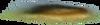 Скрап-набор Your planet 0_8604a_f1902c50_XS