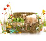 MRD_SwingIntoSpring_Kit_BONUSCLUS4.png