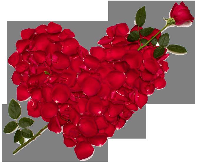 Поздравления с днем рождения невестке на украинском языке