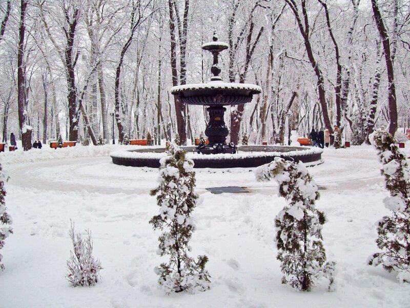 Фонтан Мариинского парка зимой