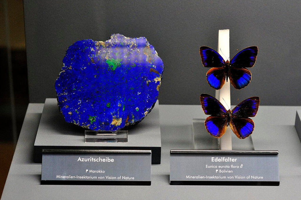 Flying Jewel Azurite, Marocco and Butterflies.