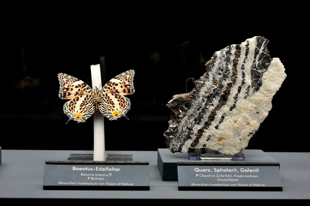 Quartz, Sphalerite, Galenite and Butterfly.