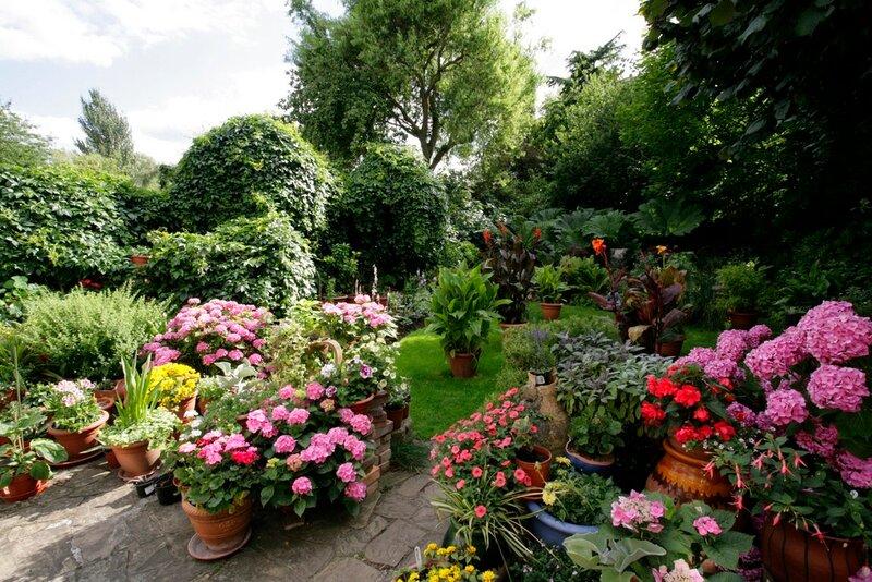 Красивый интерьер сада