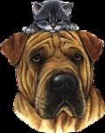 Собаки  0_57c77_5db3f260_S