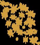 «DBV Gold Rush» 0_58b29_2c9bf091_S