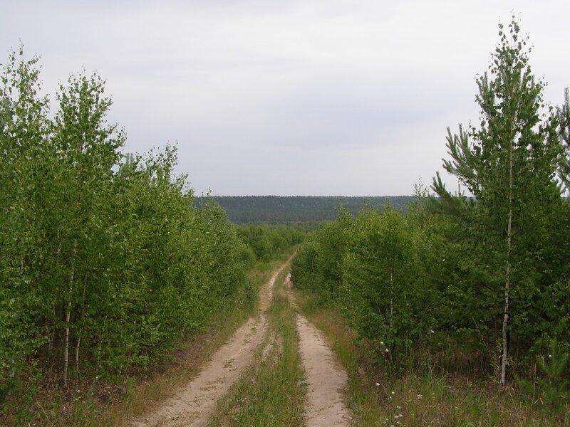 Дороги у Юлово