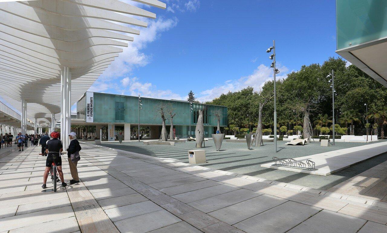 Малага. Набережная Пальмовый сюрприз (Paseo Palmeral de las Sorpresas, Muelle dos)