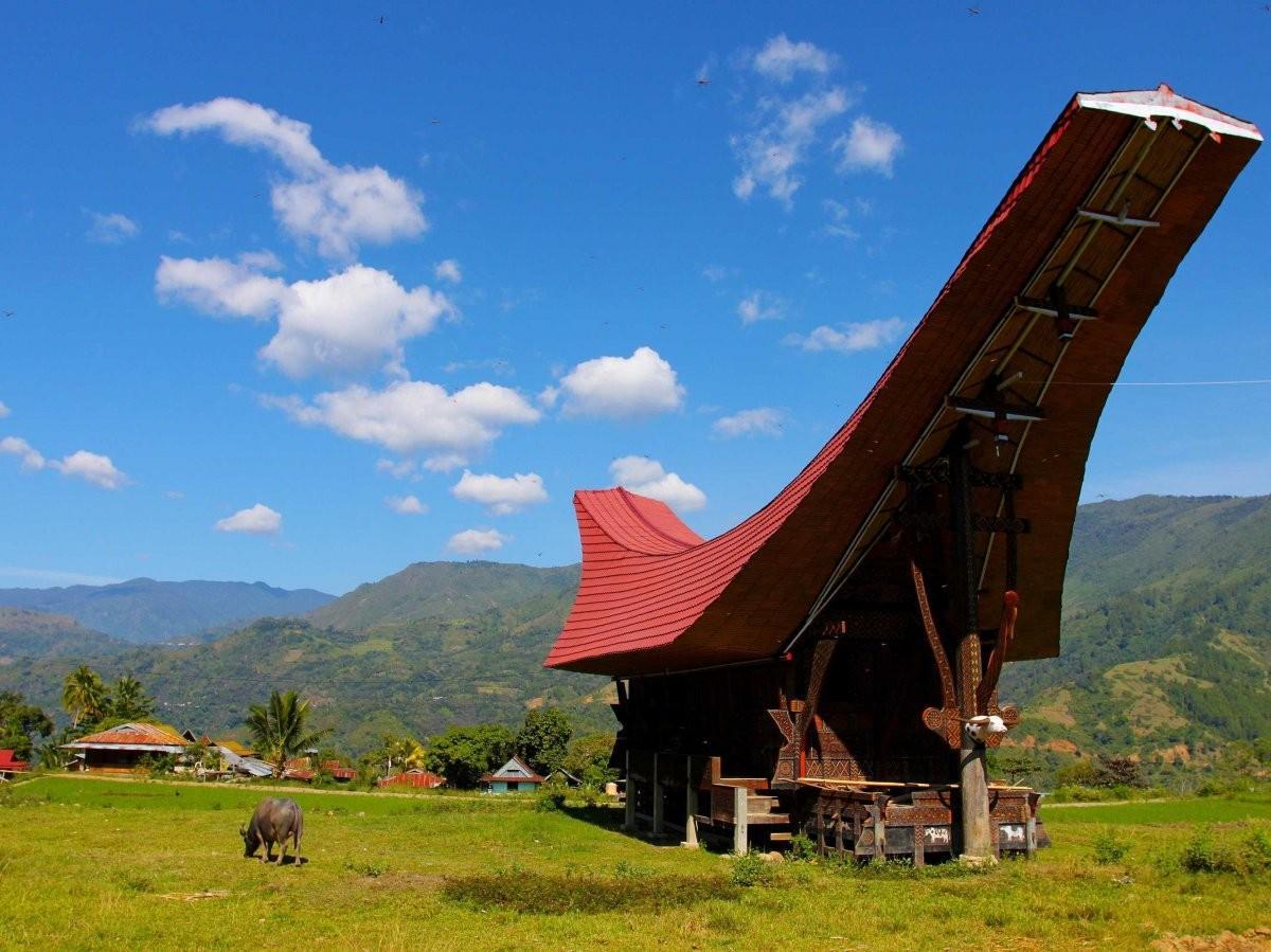 32. Посетите деревни в Тана-Торадже, Индонезия.