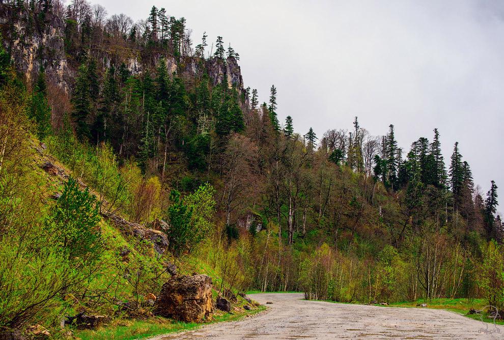 4. В горах пейзаж похож не на весенний, а на какой-то ранне-осеннний: