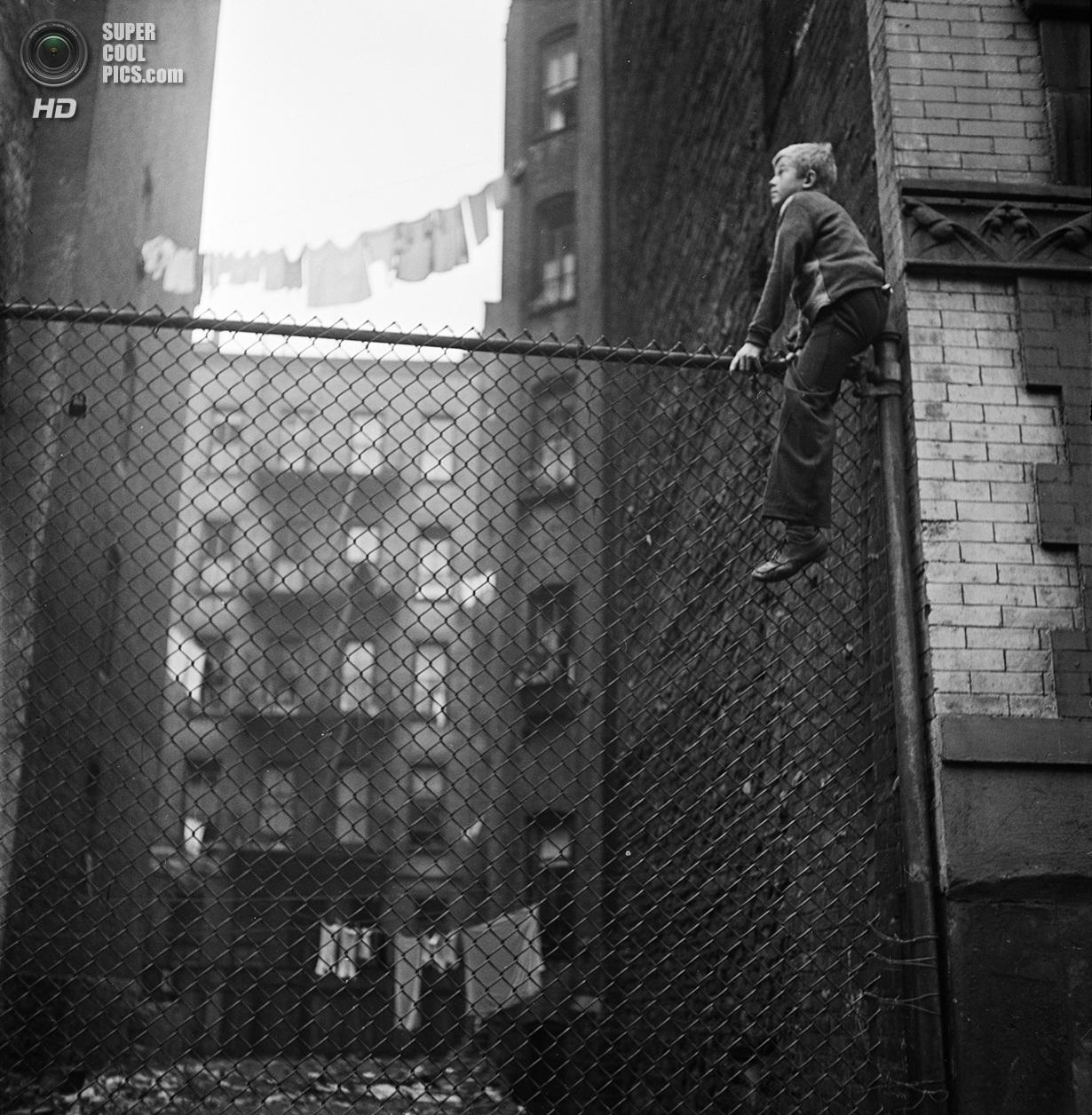США. Нью-Йорк. 1947 год. Мальчик, вылезший на забор. (V&M/Look/Stanley Kubrick)
