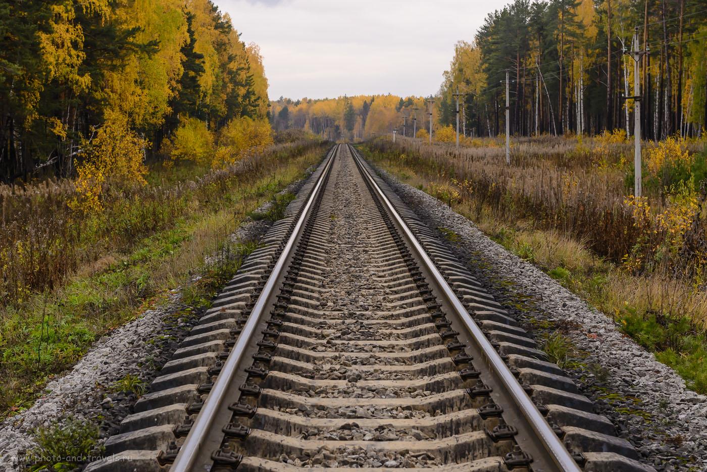 Фото 13. Участок железной дороги между станцией «Мраморская» и переездом на пути в мраморный карьер. 1/160, -1.0, 8.0, 720, 62.