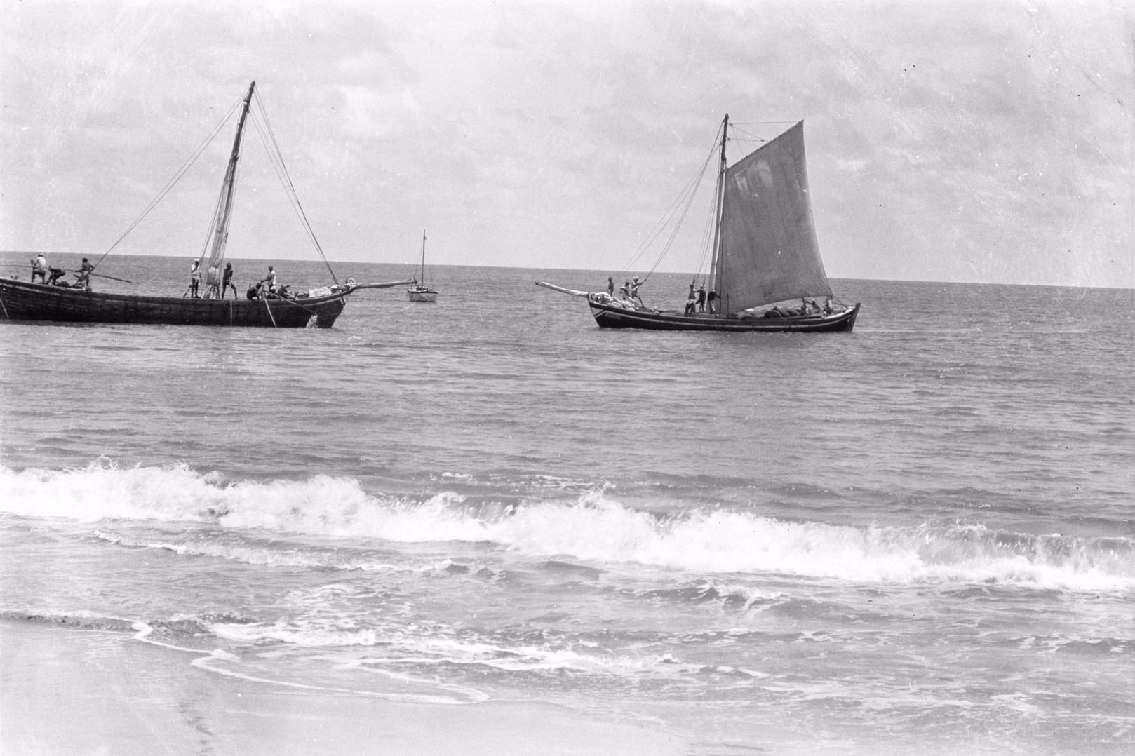 319. Баттикалоа. Лодки в прибрежных водах