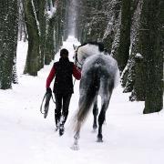 Человек и конь