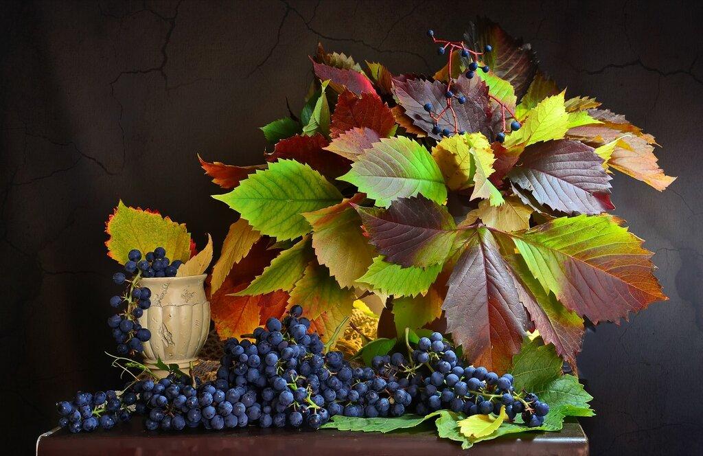 Радующая осень дарами и красками