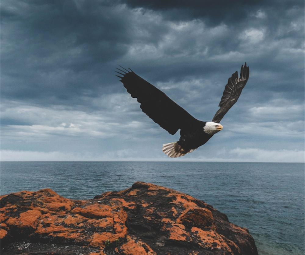© Kyle Finn Dempsey/REX/Shutterstock  «Туда, где гуляем лишь ветер дая!» Озеро Верхнее вСША.