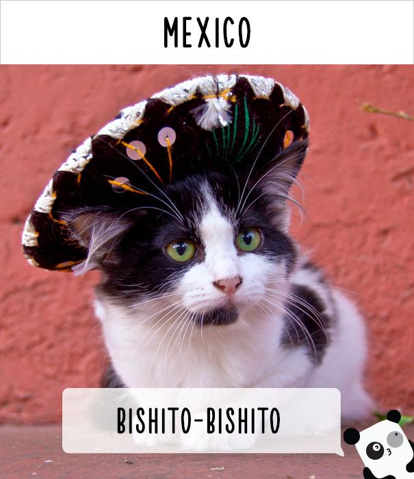 Мексика — бишито-бишито.