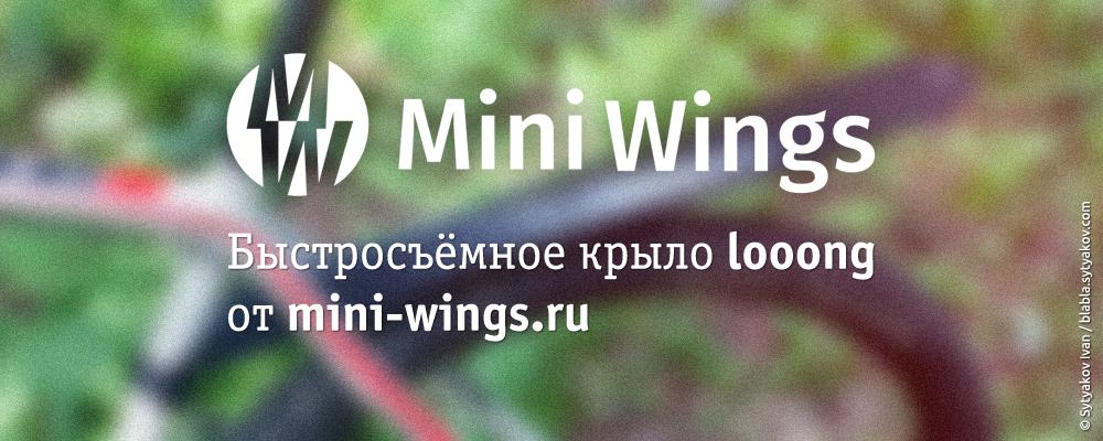 Быстросъёмное крыло от mini-wings.ru