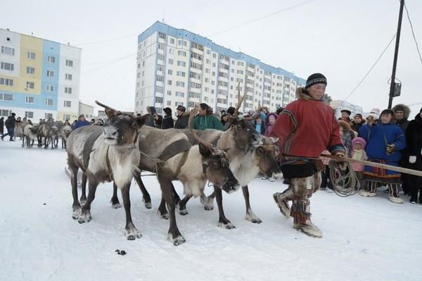 Учёные собираются изучить влияние климата Арктики начеловеческую генетику