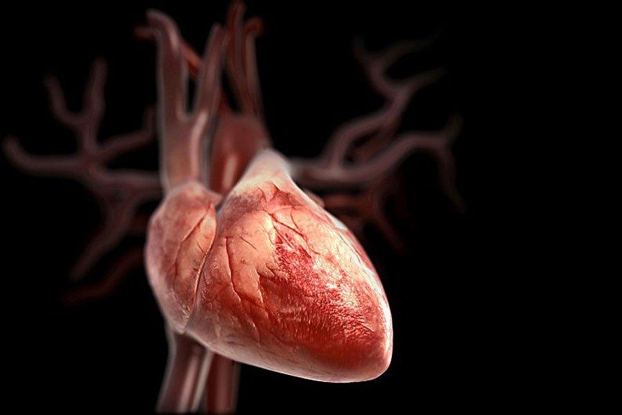 Петербургские ученые создали наночастицы для борьбы синфарктом