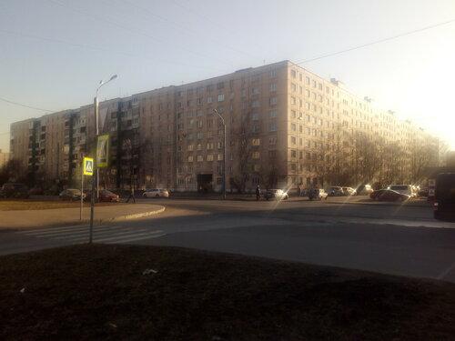 Будапештская ул. 89к1