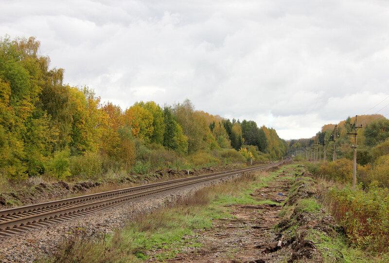 Перегон Шишково - Бежецк. Ждём грузовой из Сонково