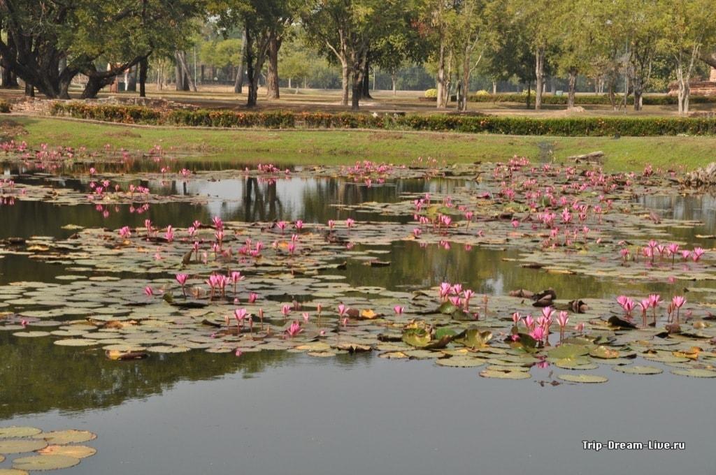 Исторический парк Сукхотай
