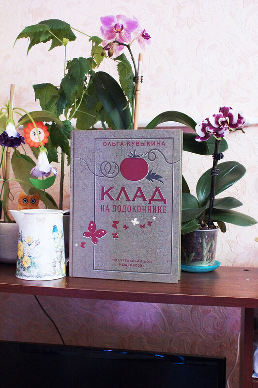 Новое переиздание моей книги
